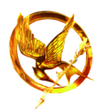 The hunger games movie logo ring by allheartsgoboom-d5yc4le