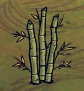 Бамбуковые заросли в игре