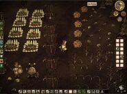 Ферма ульи, бабочки, саженцы и грядки