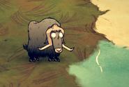 Бифало на земле
