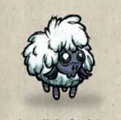 Lamb winter collection icon