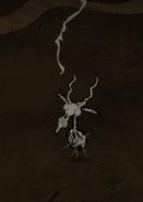 Скелет вольт козы