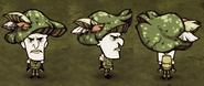 Зелёнаяшляпа максвелл