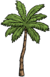 Средняя пальма