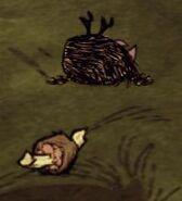 Маленькая птица умерла