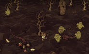 Дёрн болота в игре