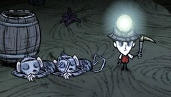 Dontstarve steam 2013-07-10 12-02-59-899