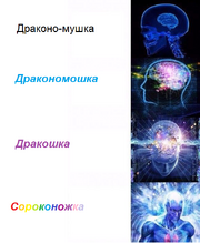 Сороконожка