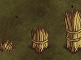 Стена из травы