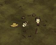 Squelette apiculteur