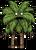 Пальмовый энт