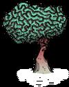 Мозговистый росток