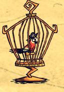 Попугай-пират в клетке