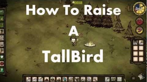 Don't Starve How To Raise a Tallbird-0