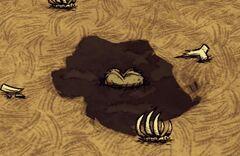 Dontstarve steam 2013-05-31 17-03-38-116