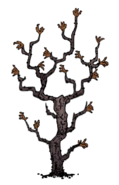 Diseased Twiggy Tree