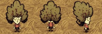 Bush Hat Willow