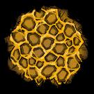 Sticky Honeycomb