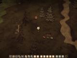 Грибная плантация