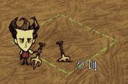 Dontstarve steam 2013-07-06 13-55-03-921