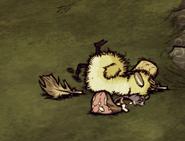 Poussoie mort