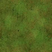 Mossy Turf Texture