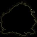 ANR silhouette beta 4