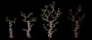 Twiggy Tree Stages