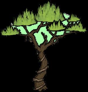 Дерево джунглей