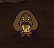 Walrus Scared