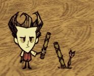 Dontstarve steam 2013-07-06 14-46-37-399