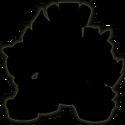 ANR silhouette beta 3