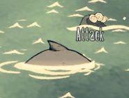 Baleine bleue nage