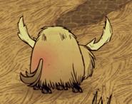 185px-Beefalo in heat