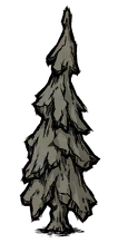 Маленькое окаменелое дерево