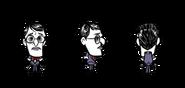 Нетриумфальный Максвелл в игре