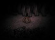 250px-Pumpkin Lantern night