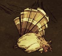 Gobbler Dead