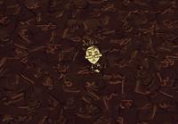 Łuskowa podłoga w grze (DST)