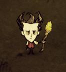 Wilson z Gold Spear