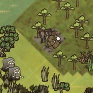 Drewniana Okrągła Rzecz na mapie (DSS)