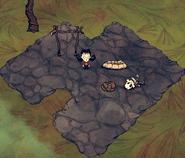 Drewniana Okrągła Rzecz w grze (DSS)