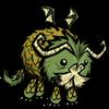 Elegant Bearded Dragon