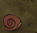 Snurtle