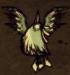 Śnieżny ptak w locie