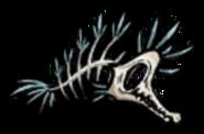 Morskie kości 1
