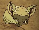 Śpiący Zimowy koalefant