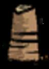 Pniak palmy (DSS)