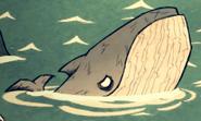 Wieloryb nibieski w grze (DSS)