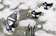 Slajd na brzuchu pingwinów
